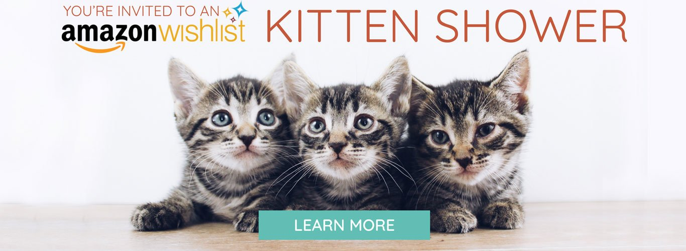 Kitten Shower Wishlist Graphic